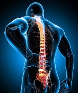 Боль в спине 1