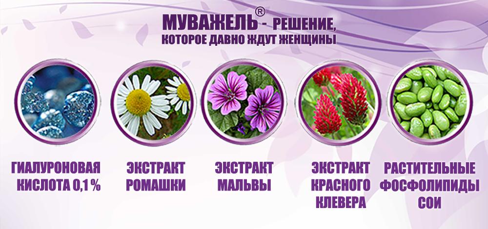 Муважель_компоненты_Состав